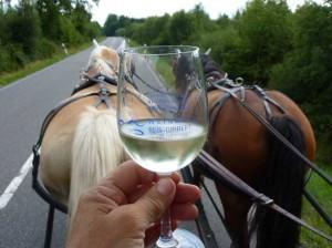 Weinprobe auf der Kutsche