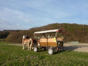 Planwagen2