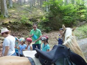 Pferde und Wanderer bei der Pause