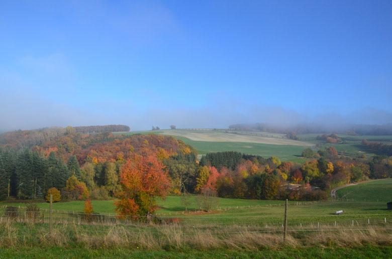 bunte Herbstlandschaft
