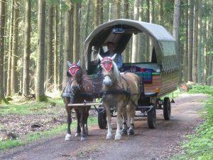 großer Planwagen im Wald