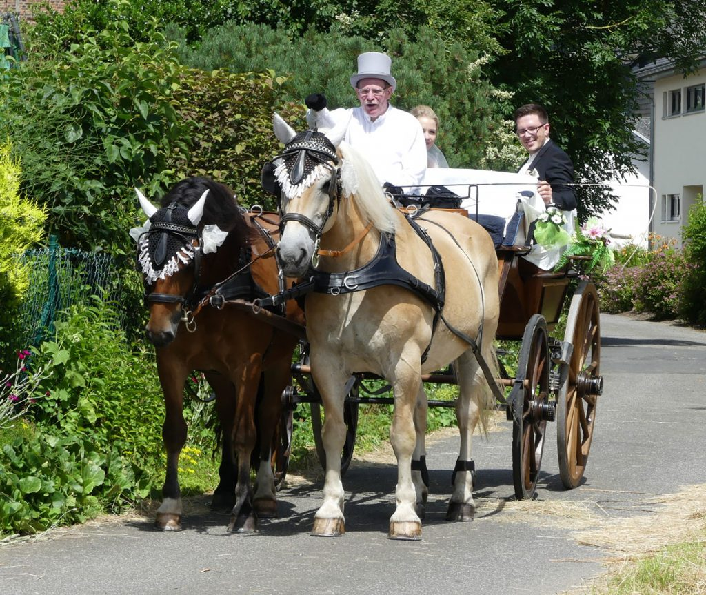 Hochzeitsfahrt bei Kaiserwetter